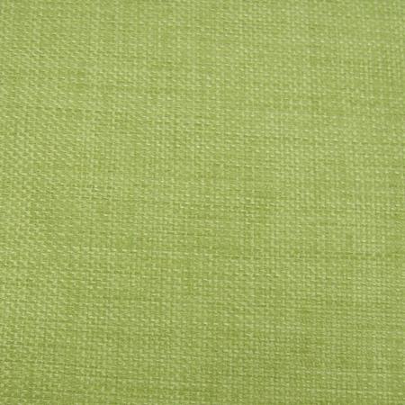 C743 - Rave Celery